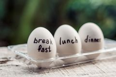 Μονο-διατροφή, διατροφή αυγών, γεύμα μεσημεριανού γεύματος προγευμάτων στοκ φωτογραφία