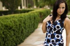 μοντέλο μόδας brunette στοκ φωτογραφία με δικαίωμα ελεύθερης χρήσης
