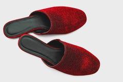 Μοντέρνα θηλυκά κόκκινα παπούτσια πέρα από το λευκό Στοκ Εικόνες