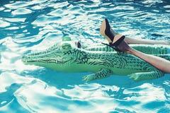Μοντέρνα προϊόντα παπουτσιών και δέρματος διογκώσιμος κροκόδειλος στην πισίνα στοκ φωτογραφία με δικαίωμα ελεύθερης χρήσης