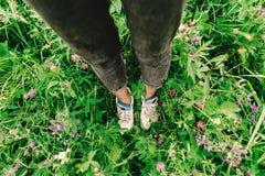 Μοντέρνα πόδια και πάνινα παπούτσια γυναικών hipster στη ζωηρόχρωμα χλόη και τα WI Στοκ Φωτογραφίες