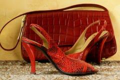 μοντέρνες γυναίκες παπουτσιών μόδας κόκκινες s Στοκ φωτογραφία με δικαίωμα ελεύθερης χρήσης