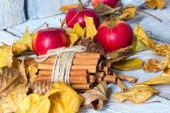 Μοντέρνη αγροτική ή ταπετσαρία φθινοπώρου με την κανέλα και το μήλο και φύλλα στο ξύλινο υπόβαθρο Διάστημα για το κείμενο Άνετη δ Στοκ Εικόνα