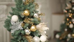 Μοντέρνο άσπρο νέο εσωτερικό σχέδιο παραμονής έτους με τα διακοσμημένα δέντρα έλατου Σπίτι άνεσης με το σύνολο χριστουγεννιάτικων φιλμ μικρού μήκους