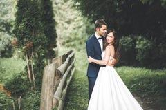 Μοντέρνο ζεύγος των ευτυχών newlyweds που θέτουν στο πάρκο στη ημέρα γάμου τους στοκ φωτογραφία με δικαίωμα ελεύθερης χρήσης