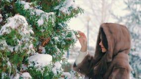 Μοντέρνο κορίτσι Brunette κοντά στα χιονισμένα δέντρα το χειμώνα, στο καφετί παλτό γουνών σε αργή κίνηση απόθεμα βίντεο