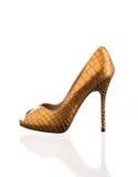 Μοντέρνο παπούτσι γυναικών Στοκ φωτογραφία με δικαίωμα ελεύθερης χρήσης