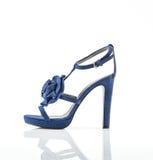 Μοντέρνο παπούτσι γυναικών Στοκ Εικόνες
