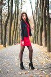 Μοντέρνο πορτρέτο φθινοπώρου του νέου ευτυχούς κόκκινου κραγιόν κοριτσιών brunette υπαίθρια στην πόλη Στοκ φωτογραφία με δικαίωμα ελεύθερης χρήσης