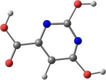 Μοριακή δομή Orotic οξέος που απομονώνεται στο λευκό Στοκ Εικόνα