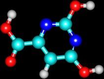 Μοριακή δομή Orotic οξέος που απομονώνεται στο Μαύρο Στοκ Εικόνες