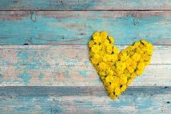 Μορφή καρδιών από τις κίτρινες πικραλίδες με το διάστημα αντιγράφων στο παλαιό turquoi Στοκ φωτογραφία με δικαίωμα ελεύθερης χρήσης
