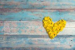 Μορφή καρδιών από τις κίτρινες πικραλίδες με το διάστημα αντιγράφων στο παλαιό τυρκουάζ ξύλινο υπόβαθρο Στοκ εικόνα με δικαίωμα ελεύθερης χρήσης