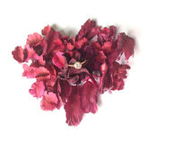 Μορφή καρδιών του σακουλιού λουλουδιών με το δαχτυλίδι dimond για το βαλεντίνο συμπυκνωμένο στοκ εικόνες με δικαίωμα ελεύθερης χρήσης