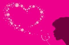 μορφή καρδιών χνουδιού πικραλίδων Στοκ φωτογραφίες με δικαίωμα ελεύθερης χρήσης