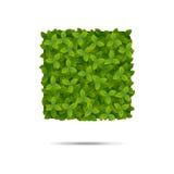 Μορφή που καλύπτεται τετραγωνική στα φύλλα Διανυσματική απεικόνιση