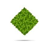 Μορφή Rombus που καλύπτεται στα φύλλα Απεικόνιση αποθεμάτων