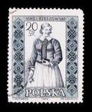 ΜΟΣΧΑ, ΡΩΣΙΑ - 20 ΙΟΥΝΊΟΥ 2017: Ένα γραμματόσημο που τυπώνεται στην Πολωνία παρουσιάζει Στοκ εικόνα με δικαίωμα ελεύθερης χρήσης