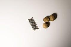 μοσχοκάρυδο Στοκ φωτογραφίες με δικαίωμα ελεύθερης χρήσης