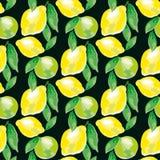 Μοτίβο λεμονιών Watercolour ζωηρό σκηνικό μόδας έννοιας Στοκ Εικόνες