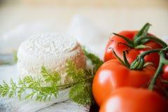 Μοτσαρέλα, ντομάτες κερασιών και φρέσκος βασιλικός - συστατικά για τη caprese σαλάτα Στοκ Εικόνα