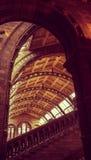 Μουσεία του Λονδίνου - μουσείο φυσικής ιστορίας - Archs Στοκ εικόνα με δικαίωμα ελεύθερης χρήσης