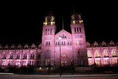 μουσείο ιστορίας φυσι&kapp Στοκ εικόνα με δικαίωμα ελεύθερης χρήσης