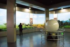 Μουσείο της ασιατικής Κίνας, Πεκίνο, Πεκίνο της φυσικής ιστορίας Στοκ Φωτογραφία