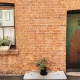 Μουσείο της Susannah Στοκ φωτογραφίες με δικαίωμα ελεύθερης χρήσης