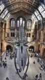 μουσείο του Λονδίνου ιστορίας της Αγγλίας φυσικό στοκ εικόνα