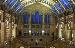 μουσείο του Λονδίνου ιστορίας της Αγγλίας φυσικό Στοκ Εικόνες