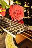 Μουσική και φύση Στοκ φωτογραφίες με δικαίωμα ελεύθερης χρήσης