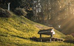 Μουσική στη φύση στοκ φωτογραφία