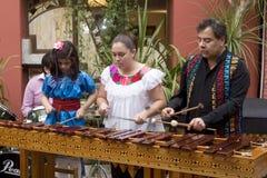 Μουσικοί που παίζουν το marimba στοκ φωτογραφίες