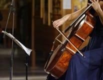 μουσικοί στη συναυλία της κλασικής μουσικής Στοκ φωτογραφία με δικαίωμα ελεύθερης χρήσης