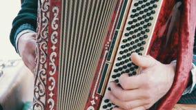 Μουσικός ακκορντέον πιάνων απόθεμα βίντεο