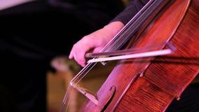 Μουσικός βιολιστών που παίζει το βιολοντσέλο απόθεμα βίντεο
