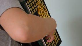 Μουσικός κοριτσιών που παίζει το ακκορντέον απόθεμα βίντεο