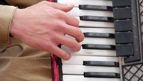 Μουσικός που παίζει το ακκορντέον Κινηματογράφηση σε πρώτο πλάνο ακκορντέον παιχνιδιού χεριών Φορέας ακκορντέον απόθεμα βίντεο