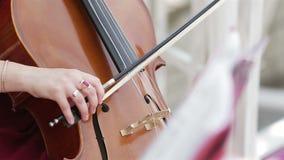 Μουσικός που παίζει contrabass στο θερινό πάρκο φιλμ μικρού μήκους