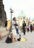 Μουσικός στη γέφυρα του Charles Στοκ Εικόνα