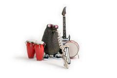 μουσικός τζαζ αβοκάντο Στοκ φωτογραφία με δικαίωμα ελεύθερης χρήσης