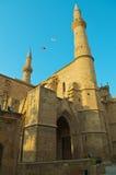 μουσουλμανικό τέμενος seli Στοκ εικόνα με δικαίωμα ελεύθερης χρήσης