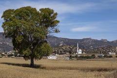 Μουσουλμανικό τέμενος - Turnalar - τουρκική Δημοκρατία της βόρειας Κύπρου Στοκ Εικόνες