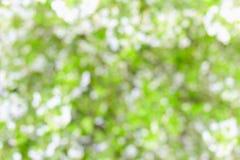 Μουτζουρωμένη αφηρημένη ανασκόπηση - άνθη κερασιών Στοκ εικόνα με δικαίωμα ελεύθερης χρήσης