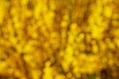 μουτζουρωμένος κίτρινο&si Στοκ Φωτογραφίες
