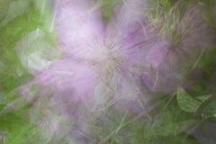 Μουτζουρωμένο Floral υπόβαθρο Στοκ Εικόνα