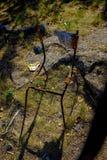 Μούμια εδρών στοκ φωτογραφία