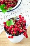 Μούρα κόκκινων σταφίδων σε μια εκλεκτής ποιότητας άσπρη κούπα Στοκ φωτογραφία με δικαίωμα ελεύθερης χρήσης