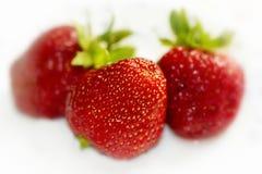 Μούρα μιας φράουλας Στοκ φωτογραφία με δικαίωμα ελεύθερης χρήσης